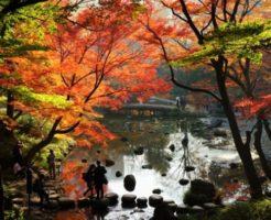 小石川後楽園 紅葉